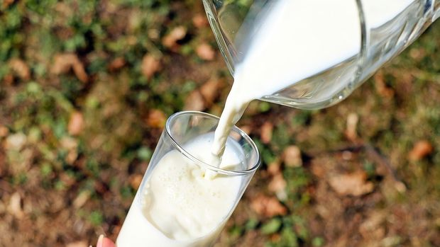 Toplanan inek sütü miktarı Ekim'de azaldı
