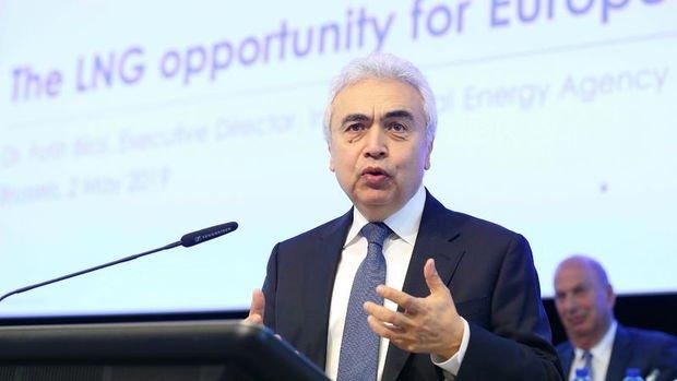 UEA/Birol: Enerji bolluğu Türkiye için avantaj
