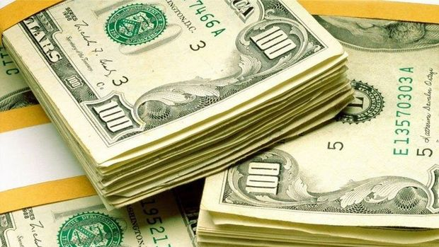 Yurt içi yerleşiklerin döviz mevduatı 230 milyon dolar arttı