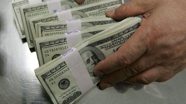 Yurt içi yerleşiklerin döviz mevduatı 733 milyon dolar arttı