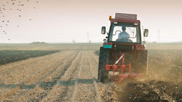 Tarım-ÜFE Aralık'ta arttı