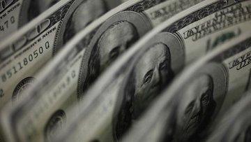 Merkez'in brüt döviz rezervleri 314 milyon dolar arttı