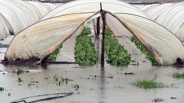 Mersin'de yaşanan selin çiftçiye bilançosu ağır oldu