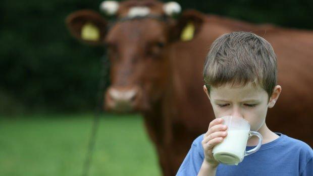 TÜSEDAD: Çiğ süt fiyatı ülke hayvancılığının tasfiye sürecini hızlandırıyor