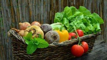 Rusya meyve-sebze ithalatında Çin yerine Türk ürünleri alabilir