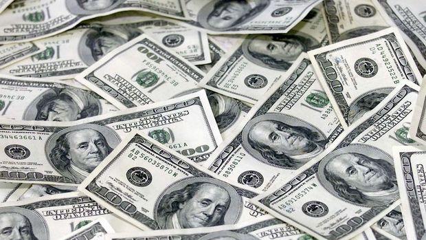 Merkez'in brüt döviz rezervleri 2.3 milyar dolar azaldı