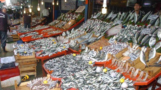 Balıkçılar sezonu az balık olması sebebiyle erken kapatıyor