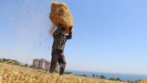 Çiftçiler kredi ödemelerinin ötelenmesini, desteklerin ödenmesini ve KGF'den faydalanmak istiyor