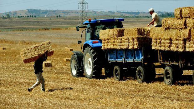 Tarım-GFE Ocak ayında yükseldi