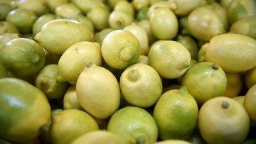 Limon ihracatı durduruldu