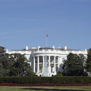 """ABD EKONOMİYİ CANLANDIRMAK İÇİN """"DAHA FAZLA TESTE"""" DAYALI PLANLAR GELİŞTİRİYOR"""