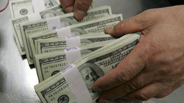 Yurt içi yerleşiklerin döviz mevduatı 3.3 milyar dolar azaldı