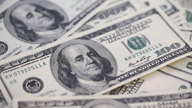 Merkez'in brüt döviz rezervleri 1.3 milyar dolar düştü