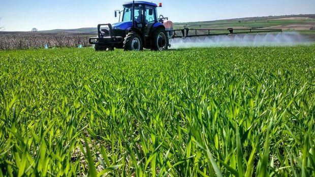 Hazine destekli tarımsal kredi geri ödemelerine 6 ay erteleme