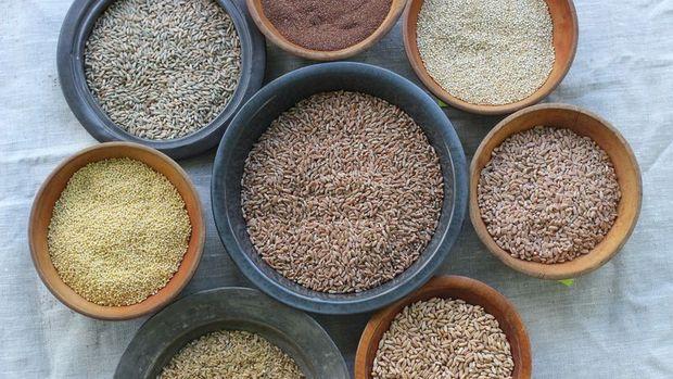 Gıda ihracatına yönelik küresel kısıtlamalar gevşetiliyor