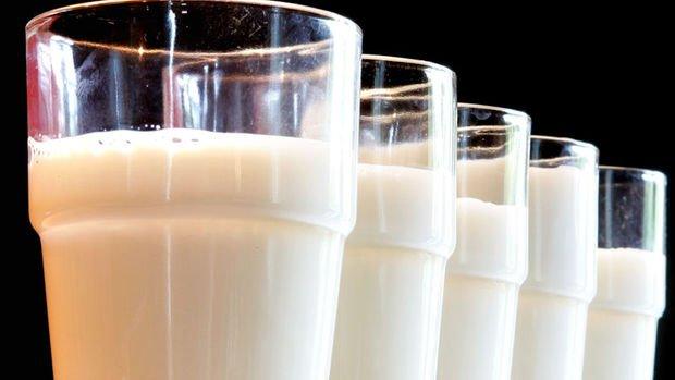 Süt sektöründe Çin'e ihracat hareketliliği