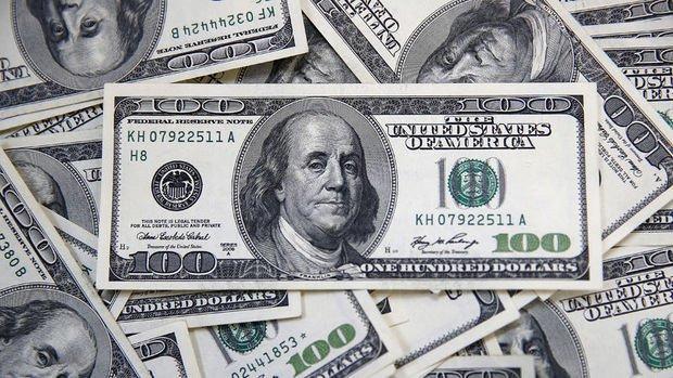 Merkez'in brüt döviz rezervleri 2.3 milyar dolar düştü