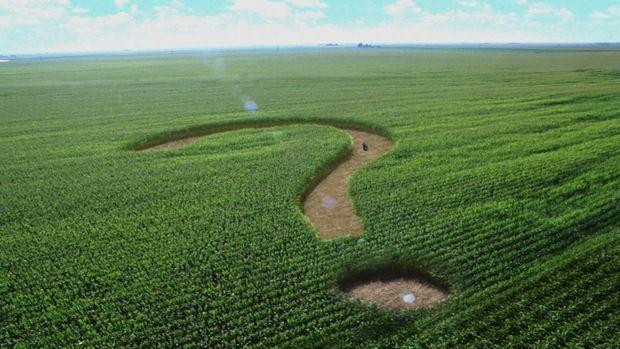 FAO'nun Gıda Görünüm Raporundan