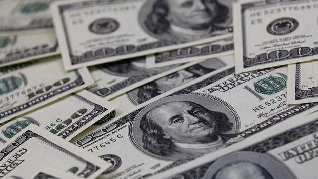 Merkez'in brüt döviz rezervleri 1.7 milyar dolar azaldı