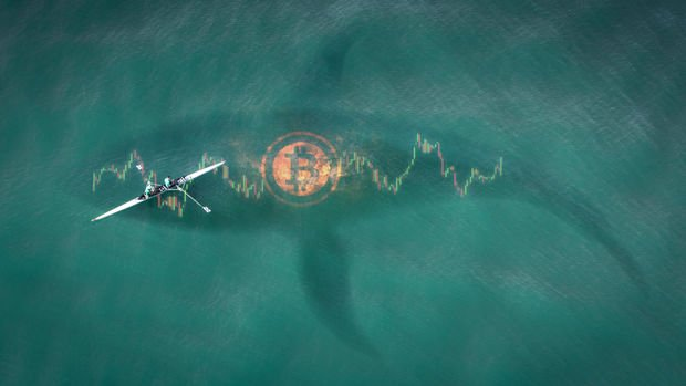 """10.9 milyar dolarlık Bitcoin ile en büyük """"balina"""" hala Satoshi"""
