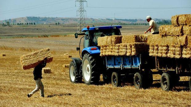 Tarımsal girdi fiyatları Mayıs'ta arttı