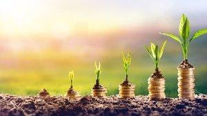 Yatırım yaparken nelere dikkat edeceğiz?