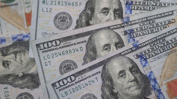 Dolardaki düşüş pandemi yönetimi konusunda ABD'yi uyarıyor