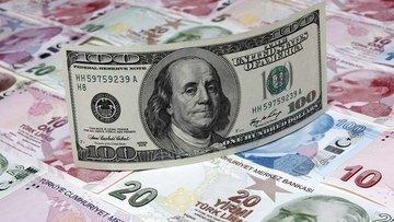 Dolar/TL günlük kazancını geri verdi