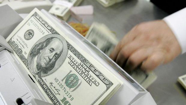 Yurt içi yerleşiklerin döviz mevduatı 327 milyon dolar azaldı