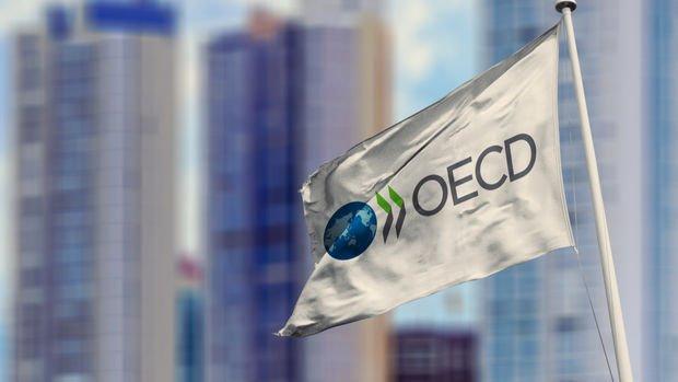 OECD Türkiye'nin 2020'de yüzde 2.9 daralmasını bekliyor