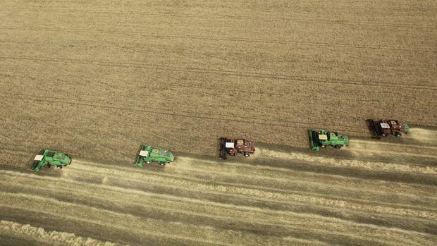 Küresel gıda fiyatları Eylül'de arttı