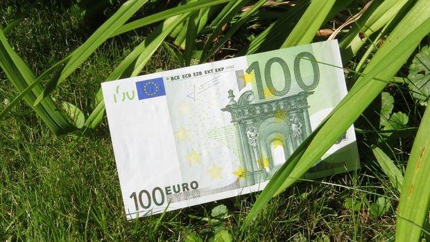 Yeşil tahviller euronun güçlenmesine neden olabilir