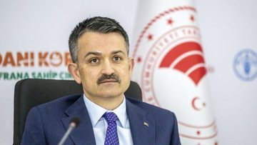 Bakan Pakdemirli: Türkiye'de 19 milyon ton gıda israf edi...