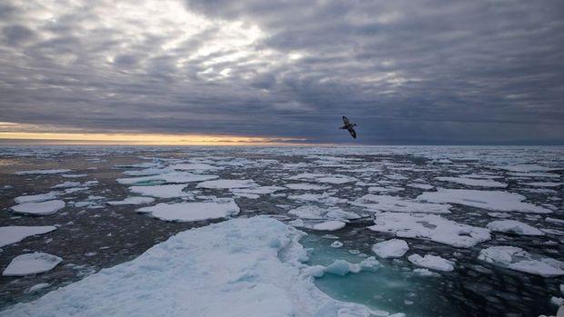 Kuzey Kutbu'nda 50 finans kuruluşu daha petrol ve doğal g...