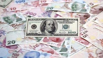 Türk Lirası'nın dolar karşısındaki kaybı devam ediyor