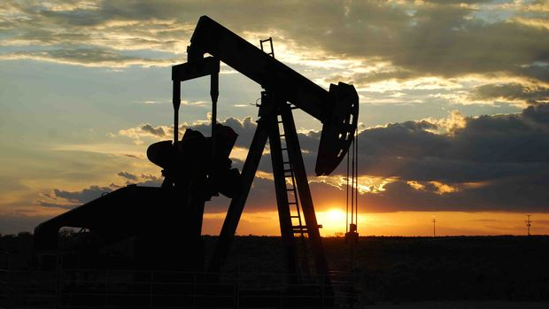 Irak ve Suudi Arabistan'dan OPEC kararlarına bağlılık vurgusu