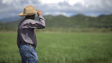 Küresel gıda fiyatları son 6 yılın zirvesinde