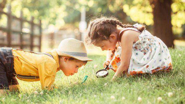 Doğa Eğitim Programları çocuklara ekolojik okuryazarlığı aşılıyor