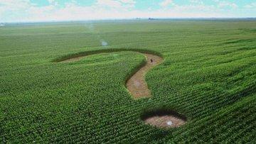 Tarım ve gıda sektörünü 2021'de ne bekliyor