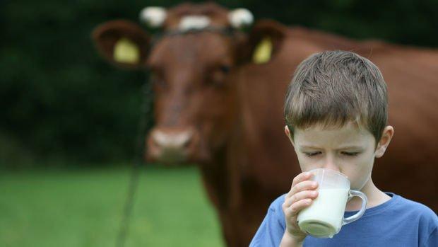 Üretici birlikleri çiğ sütü 3 TL'den satacak