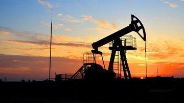 Zayıflayan dolar petrolü destekledi