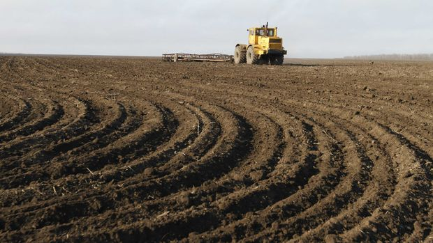 Tarımsal girdi fiyatları Kasım'da da artışını sürdürdü