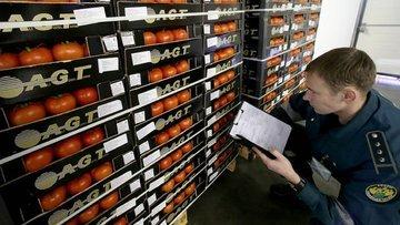 Sektör, domateste Rus kotasının tamamen kaldırılmasını be...