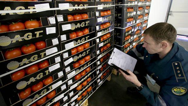 Sektör, domateste Rus kotasının tamamen kaldırılmasını bekliyor