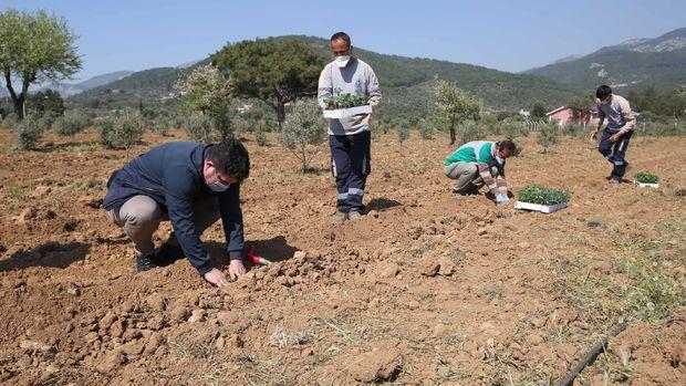 İzmir, tarımda yeni bir üretim ve pazarlama modeli oluşturuyor