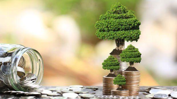 Uluslararası Ödemeler Bankası'ndan merkez bankaları için yeşil tahvil fonu