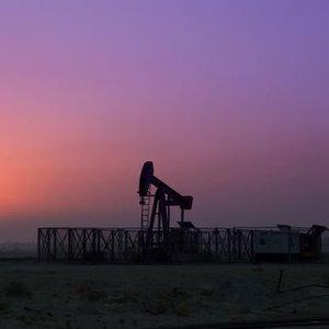 PETROL OPEC ÖNCESİ KAYIPLARINI DURDURDU