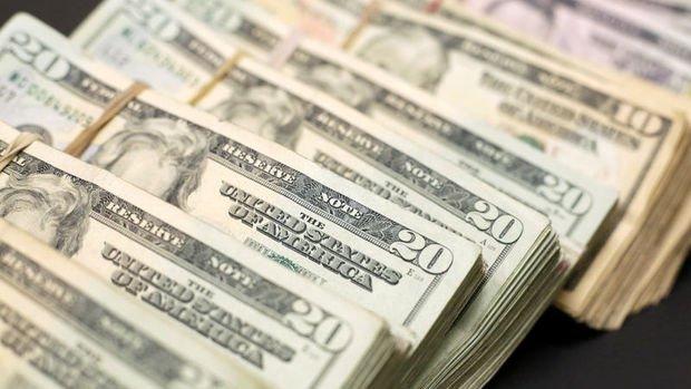 Dolar/TL'de dalgalı gün