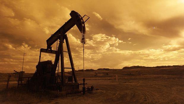 Petrolde OPEC+ günü