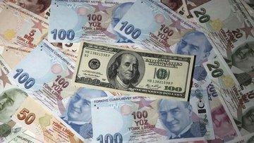 Türk Lirası gelişen para birimleriyle düşüşte
